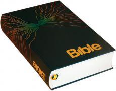 285_bible.jpg