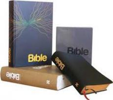 416_bible21.jpg
