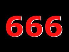 447_666.jpg