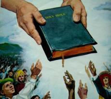 454_adventiste.jpg