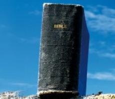 477_odhalte_svet_bible.jpg
